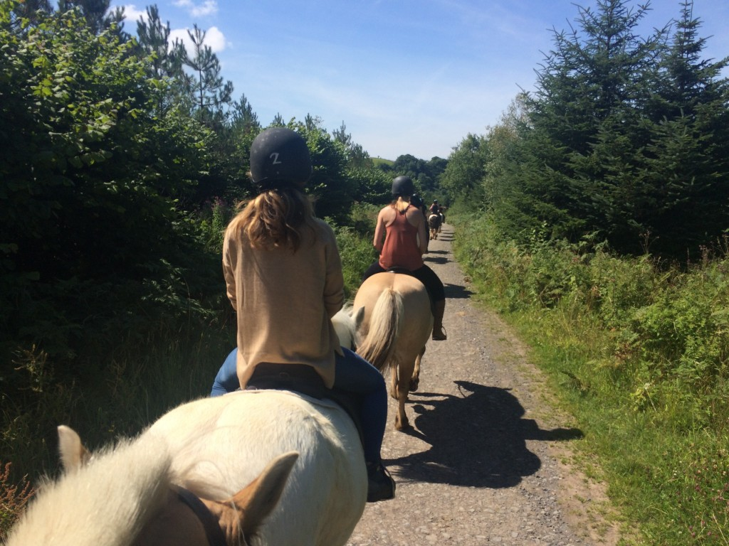 Horse riding in the mendip hills cosy life for Where to go horseback riding near me